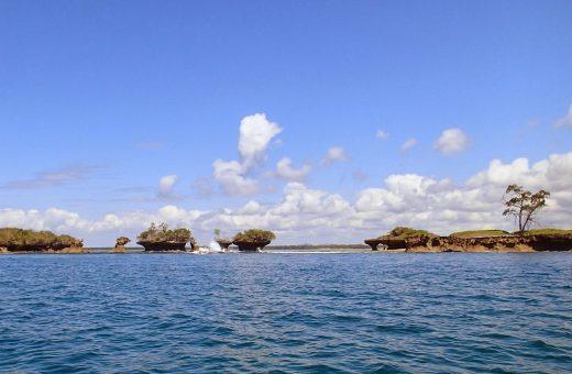 Kisite Mpunguti Marine Park and Reserve