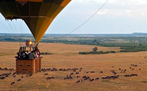 Balloon Safaris in Maasai Mara National Reserve