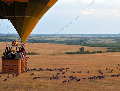 Hot Air Balloon safaris in the Magical Kenya – Kenya Safari News