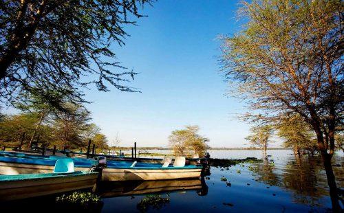 Boat cruise on lake Naivasha
