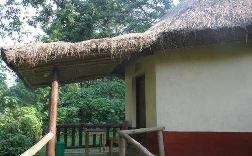 Bwindi View Bandas