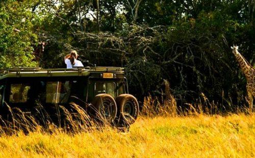 Game drives Akagera National Park