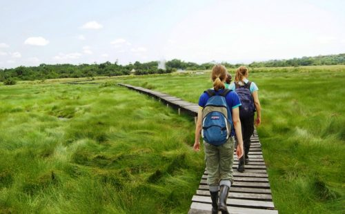 Hiking and Nature Walks in Semuliki National Park