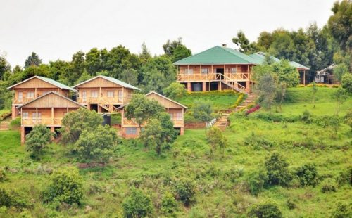 Luxury Safari Accommodation Bwindi Impenetrable National Park Uganda