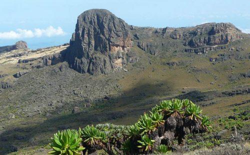 Mountain Climbing Destination elgon