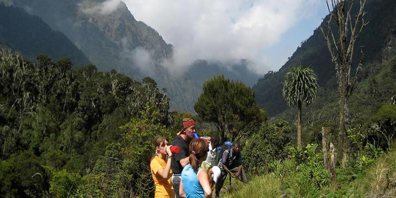 Mountain Hiking Rwenzori Mountains National Park Uganda