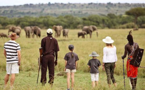 Walking Safari in Maasai Mara National Reserve
