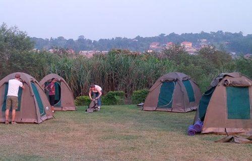 9 days Wilderness Camping Gorilla safari in Uganda