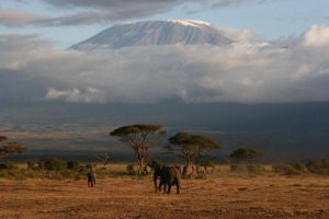Amboseli View Lodge