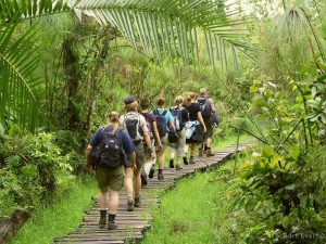 Bigodi wetland walk