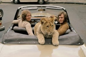 Christian The Lion Born to be Free London