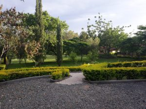 Meru National Park view Lodge