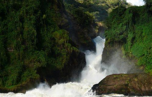 Murchison Falls & Kibale Short Uganda safari- 5 days