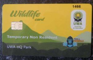 Gorilla Permits Uganda - Bwindi Gorilla safari